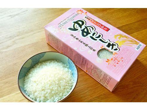 ingredience-sushi-ryze.JPG